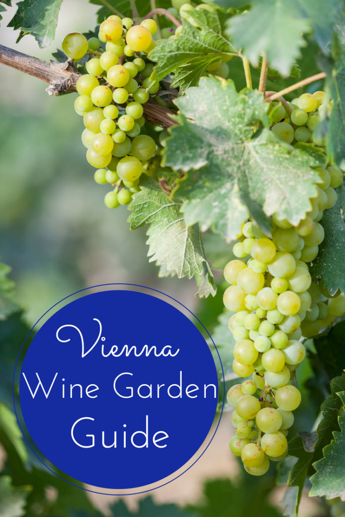 As Vienna is one of the few metropolitan cities in the world with wineries within the city limits, visiting the Vienna Wine Gardens is a unique and memorable way to spend an afternoon in the City of Music. This guide will help you plan your perfect day!