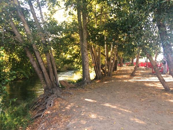 Truett Hurst River Sonoma County
