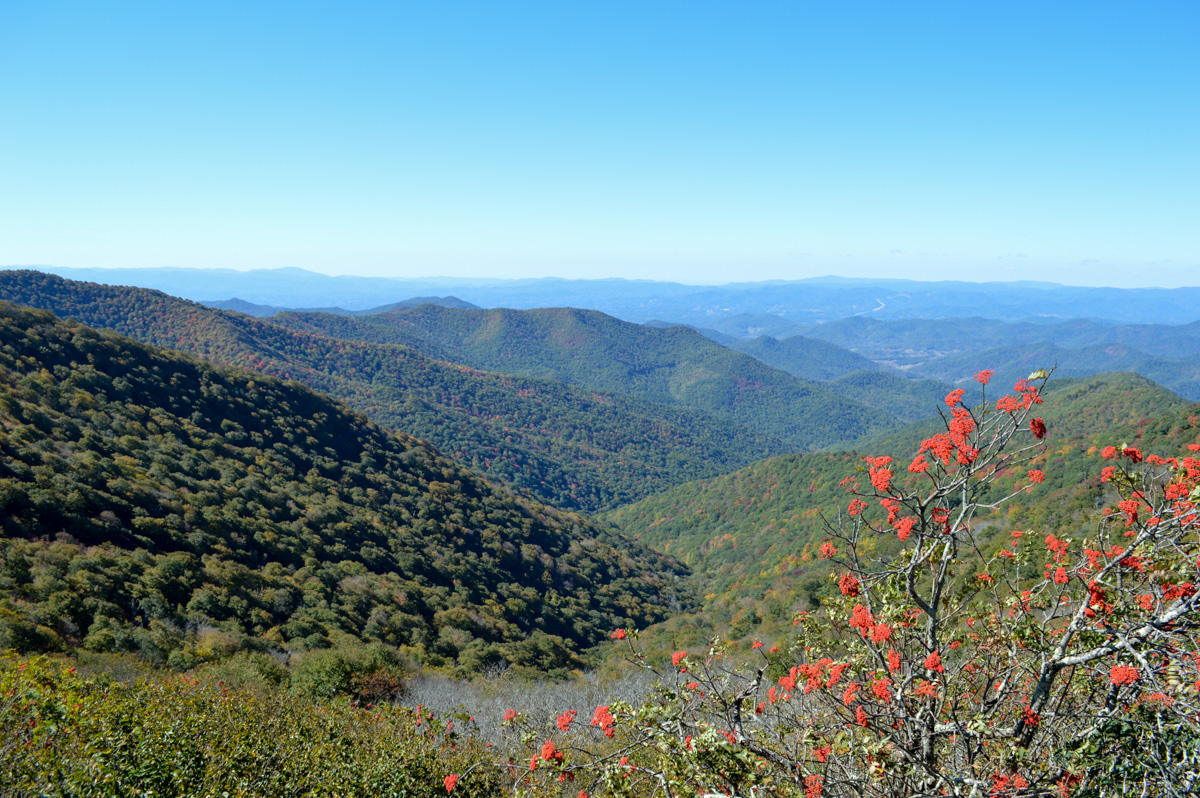 Plan your Blue Ridge Parkway Road Trip through North Carolina with our  guide, including suggestions