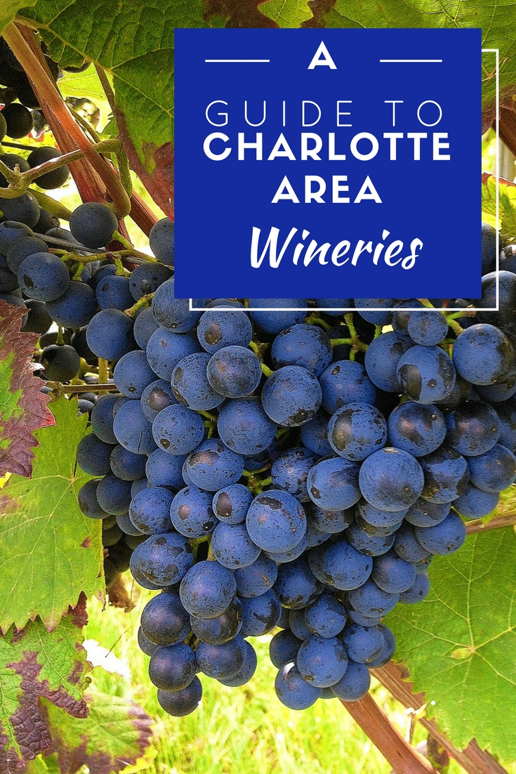 There are plenty of wine options here in Charlotte, North Carolina. Our guide will help you plan a Charlotte winery crawl.